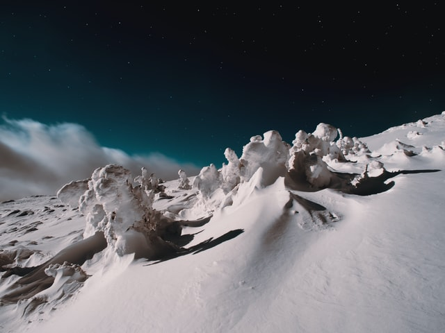 How To Survive An Avalanche If You're Caught In One
